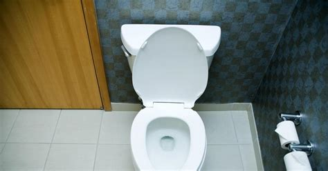 bathroom phobia teen with toilet phobia dies after holding it in for
