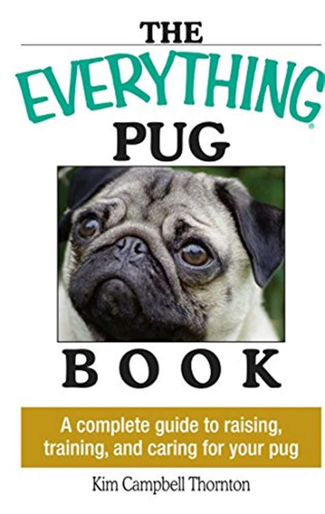 how to raise a pug pug hubpages