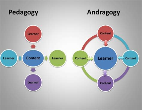 Andragogy Learning Theory Mba by Andragogy Vs Pedagogy Illustration
