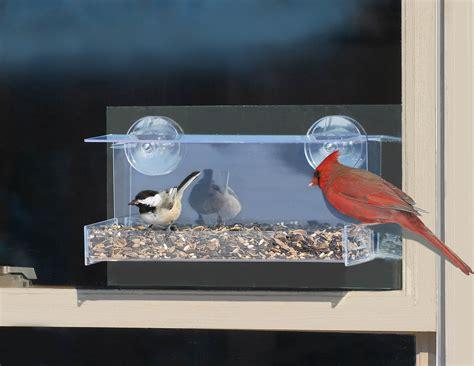 window mount bird feeder unique bird feeder