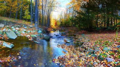 autumn landscapes 2 wallpapers colorful fall landscapes autumn landscape forest trees colorful foliage river