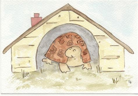 2d And 3d Interior Designer In West Delhi And Delhi Ncr by 8 Tortsmad Uk Russian Tortoises Horsfield Tortsmad