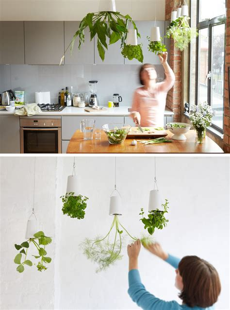 how to hang things from ceiling indoor garden idea hang your plants from the ceiling