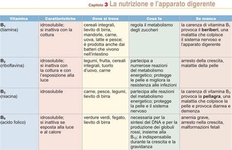 vitamine e alimenti importanza di vitamine e sali minerali nell alimentazione