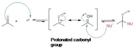 Protonated Carbonyl carbonyl mechanisms of addition chemistry libretexts