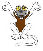 when to watch zoboomafoo pbs kids programs tv