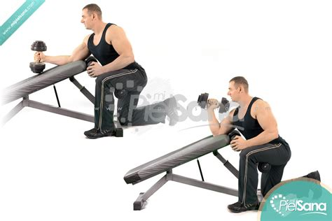 incline bench curls incline hammer curls images