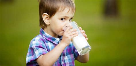 Hilo Rendah Lemak berbagai manfaat rendah lemak untuk diet sehat hilo
