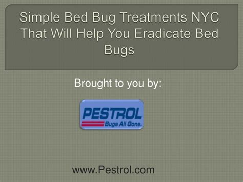 bed bugs treatment nyc simple bed bug treatments nyc that will help you eradicate