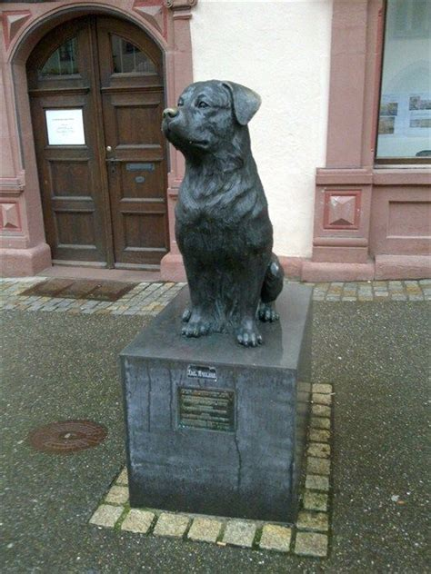 rottweiler statue rottweilers statue of and statue on
