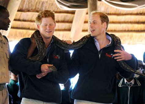 prince william education prince william and prince harry at the mokolodi education