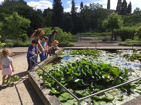 Botanischen Garten by Deutsche Pflanzen Italienische Namen Gemeinsam Im Botanischen Garten