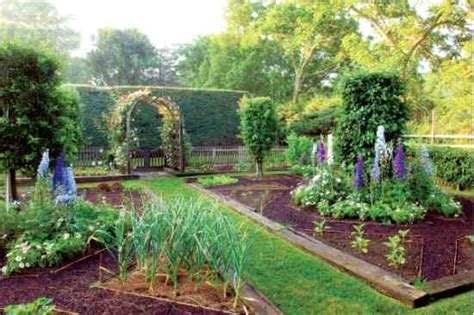 design an easy kitchen garden