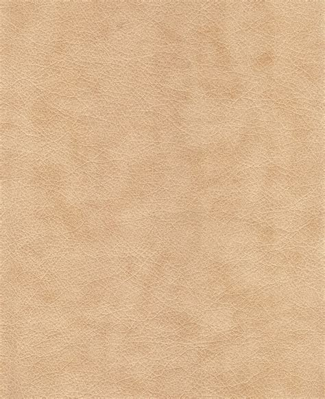 Leather Pictures by Free Photo Leather Textures Background Free Image On
