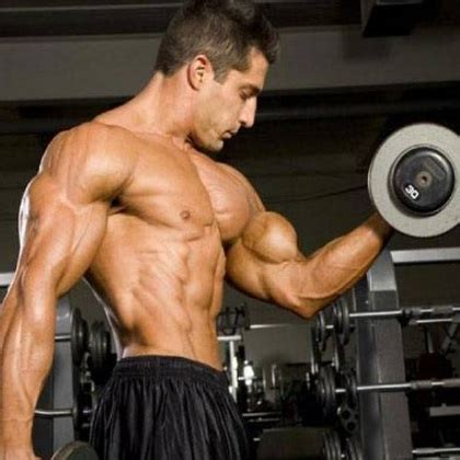 The Best Body Building Shoo   best bodybuilding training exercises different types of
