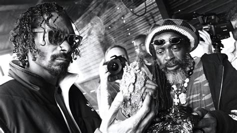film snoop lion snoop lion s reincarnated to hit theaters on march 15th