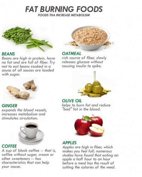 Burning Foods by Burning Food Diet Best Diet Solutions Program