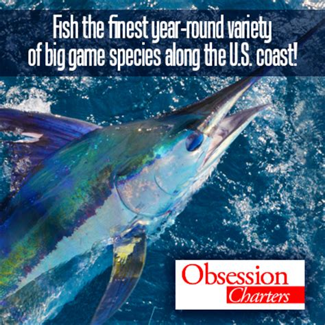 charter boat obsession offshore fishing obsession charters outer banks things
