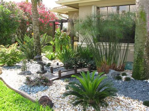 59 Best Florida Native Plants Images On Pinterest Florida Landscape Plants