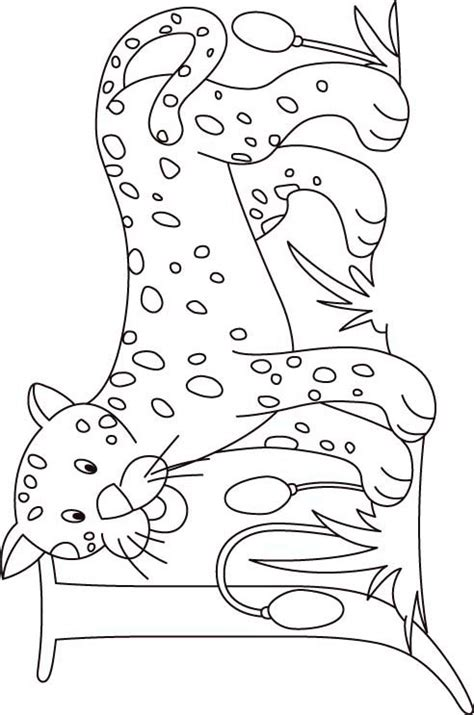 free baby jaguar coloring pages