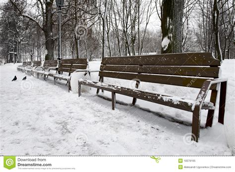bench winter empty bench in winter park stock image cartoondealer com