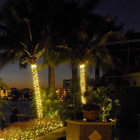 String Up Some Class String Lighting For Your Wilmington Outdoor Light Up Palm Tree