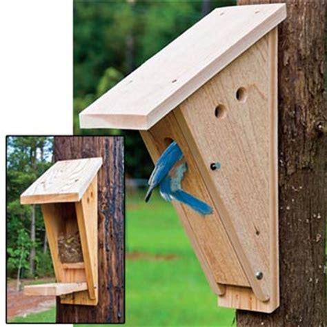 peterson bluebird house plans peterson bluebird nest box