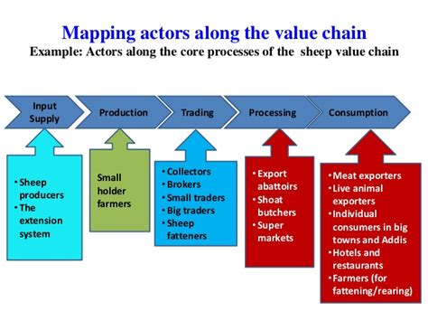 Basic Concepts Of Value Chain Analysis For Sheep And Goat Supply Chain Analysis Template