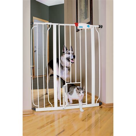 Gate With Pet Door carlson pet products expandable gate with small