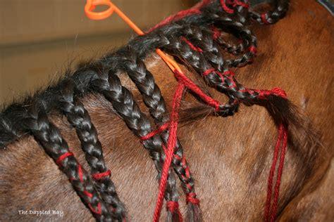 braid yarn into hair the dappled bay tutorial scalloped button braids