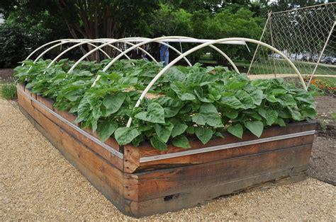 vegetable garden design raised beds absurd diy in the 14