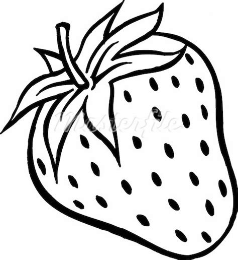 Strawberry Outline Drawing by Black White Strawberries Recipe Dishmaps