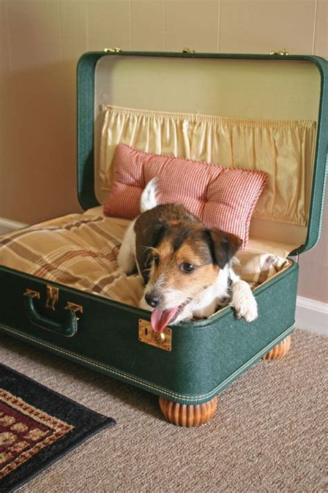 suitcase dog bed purr fect diy cat and dog bed ideas vintage suitcases