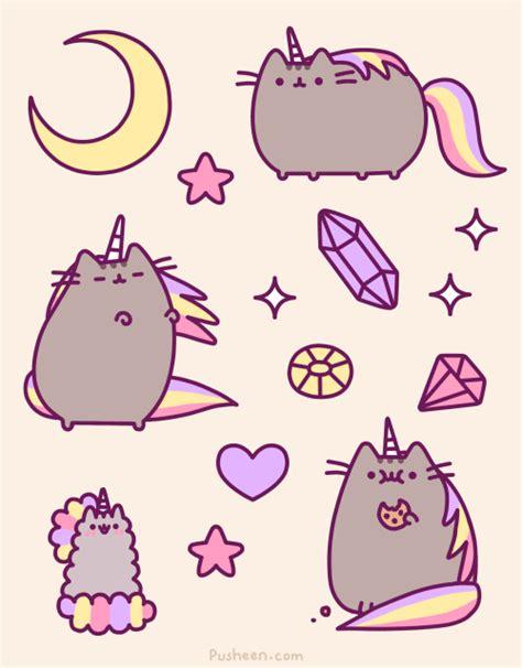 wallpaper cat unicorn trending tumblr