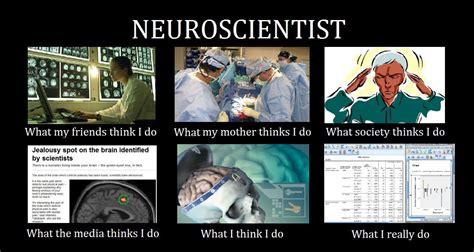 Neuroscience Meme - what i actually do everyday neuroscience