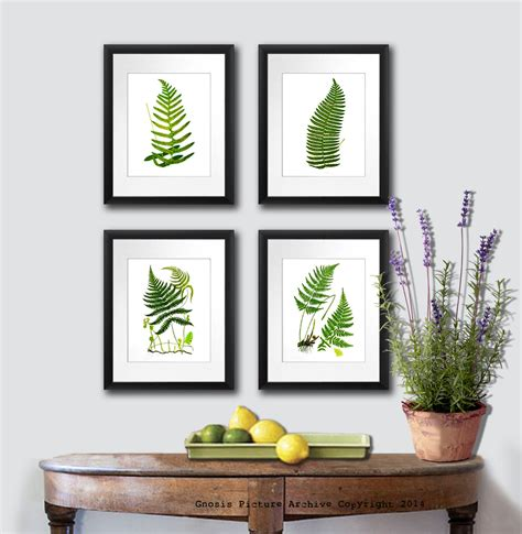fern decor back to school decor ferns art print woodland wall art fern