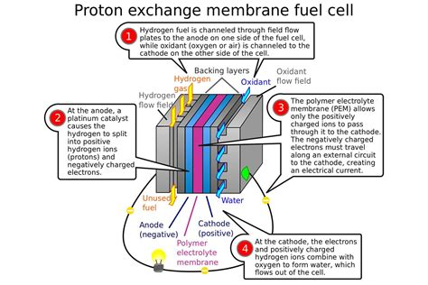 Proton Exchange Membrane Fuel Cell by Are Hydrogen Fuel Cell Vehicles A Replacement For Evs We