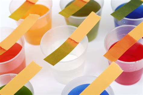 What Makes Up Paper - litmus paper and the litmus test