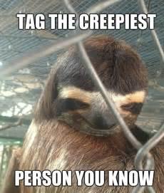 Creepy Sloth Meme - creepy sloth funny funny funny pinterest creepy