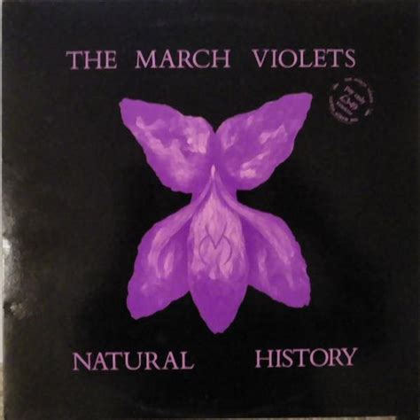 the violets of march 17 best images about new wave goodness on