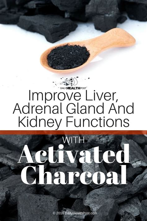 Why Mercury Detox Cause Exhaustian by Best 20 Adrenal Glands Ideas On Adrenal
