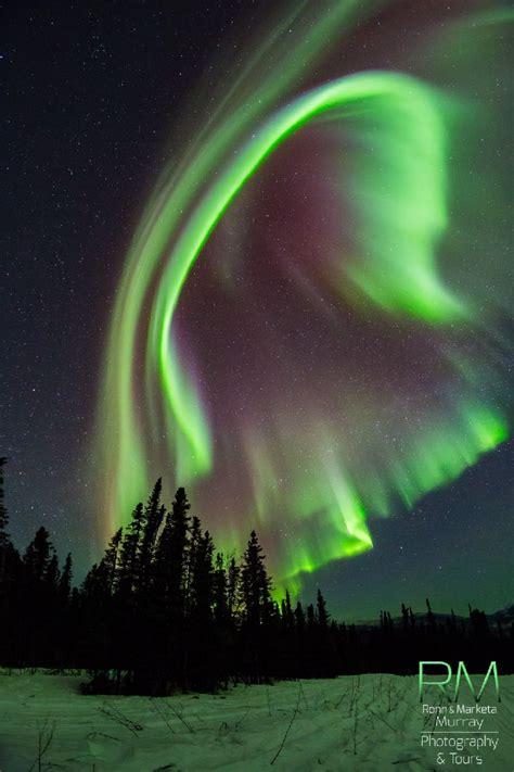 northern lights vacation alaska 2880 best images about alaska on pinterest nome alaska