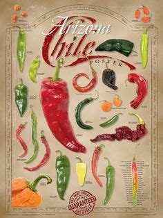 food kitchen red chili peppers single canvas wall art 1000 images about home decor on pinterest chili chile