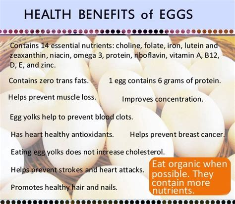 the health benefits of organic eggs benefits of eating eggs for hair om hair