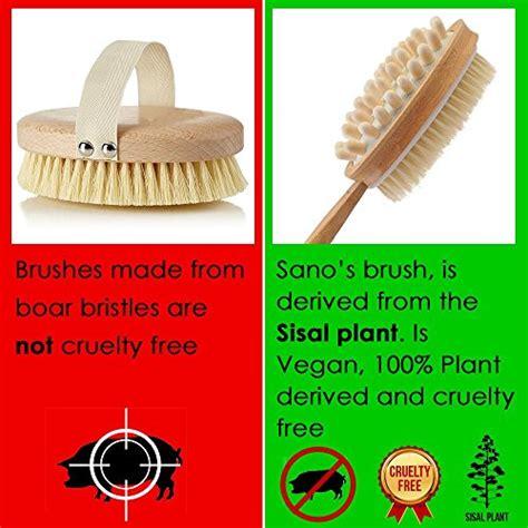 Cactus Detox Brush by Brush For Brushing Cellulite And Skin 100