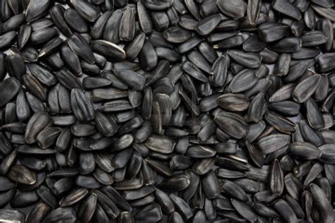 is black sunflower seeds for birds crops