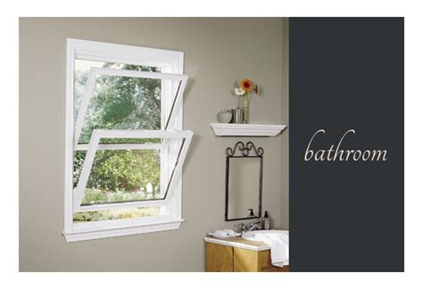 Cat Doors For Windows Decor Choosing Right Sash Window For Your Home