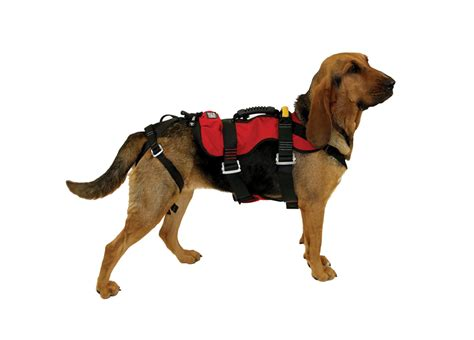 K9 Vehicle Search K9 Transport Harness K9 Get Free Image About Wiring Diagram