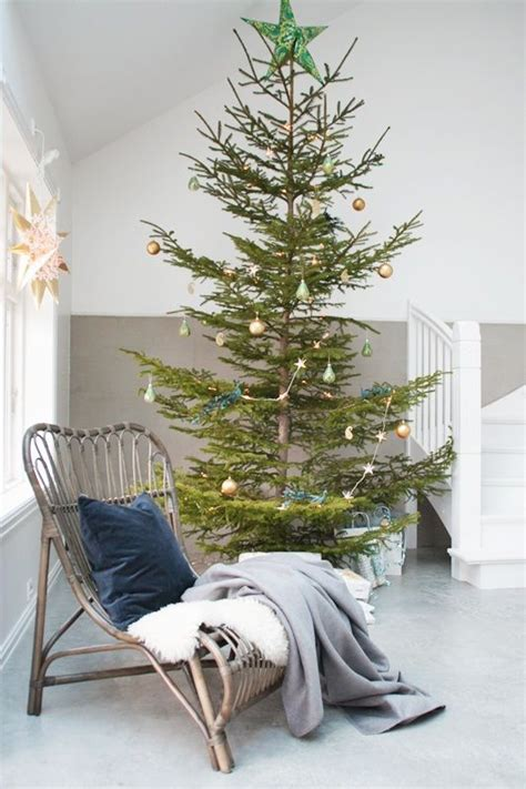 real charlie brown christmas tree 25 best ideas about real tree on tree farms decorations