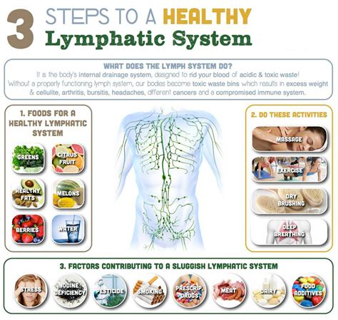 Detox Lymphatic Drainage by How To Detoxify Your Lymphatic System ваше здоровье в
